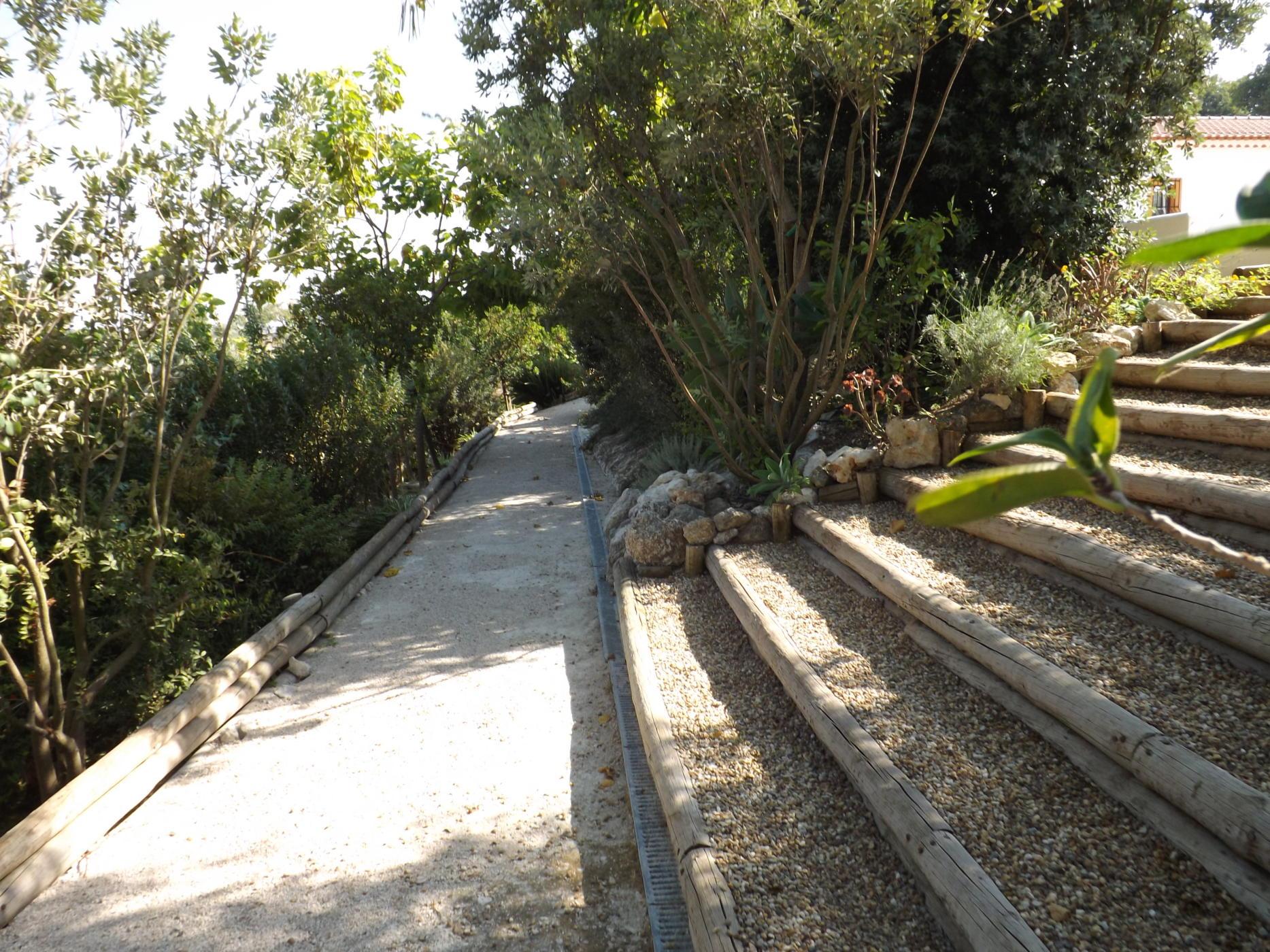 Jardim (1)