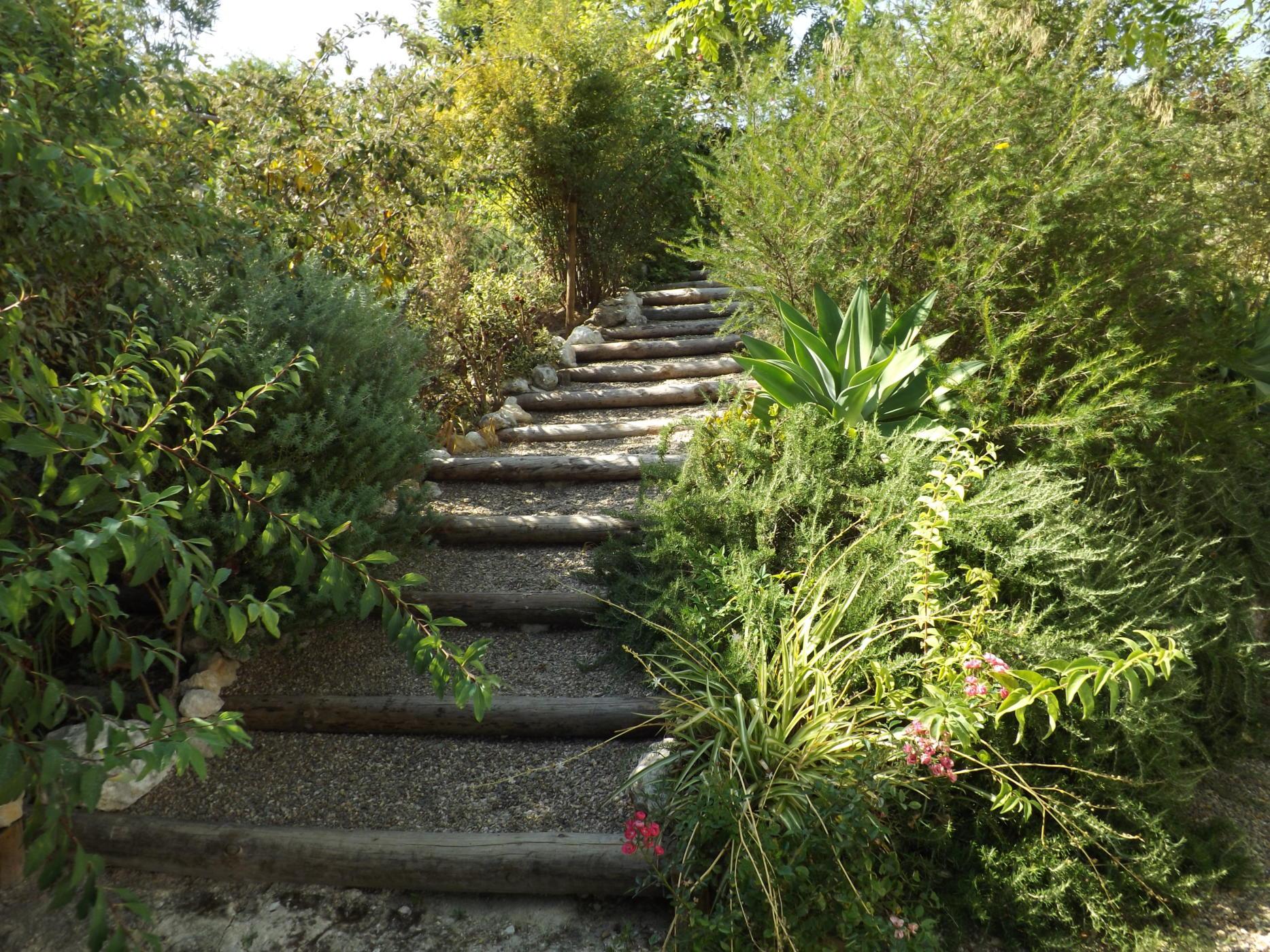 Jardim (2)